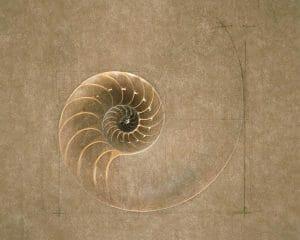 géométrie sacrée et nature